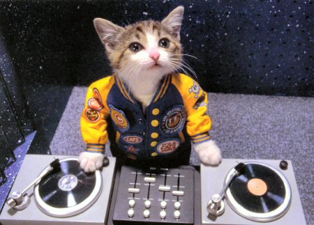 kitty-dj
